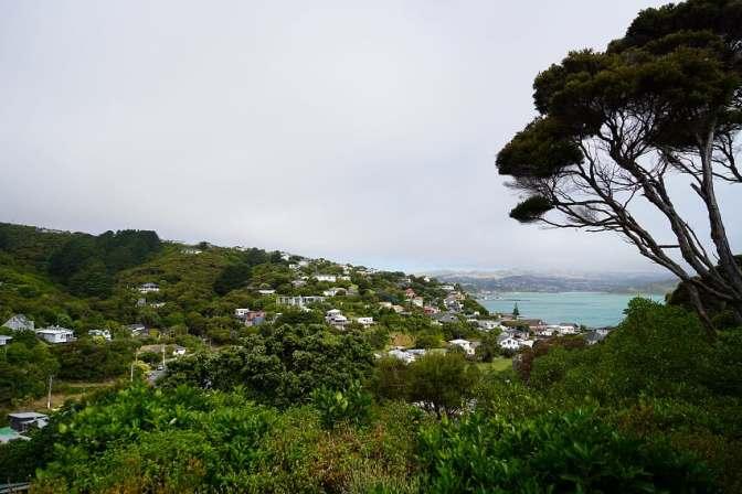 Aspen Cottage, Airbnb, Porirua, Plimmerton, Best Airbnbs, New Zealand, Airbnb NZ, Airbnb New Zealand