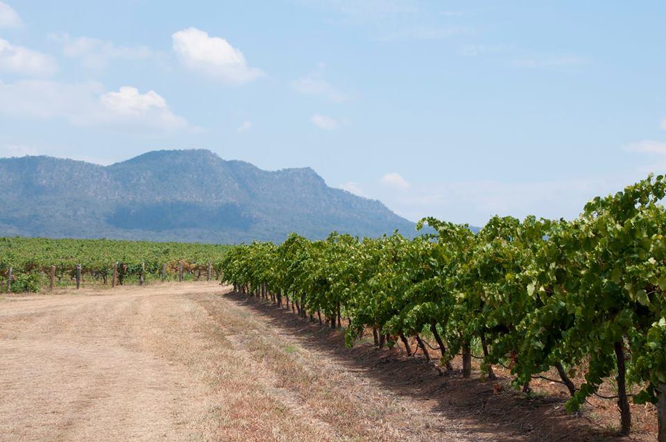 Hunter Valley, Vineyards, Boutique Wineries
