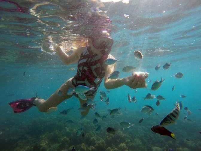 Fiji snorkeling, Fiji fish, go-pro